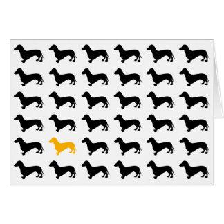 dachshunds card