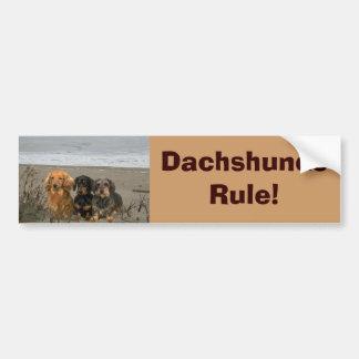 Dachshunds Rule Bumper Sticker On Beach