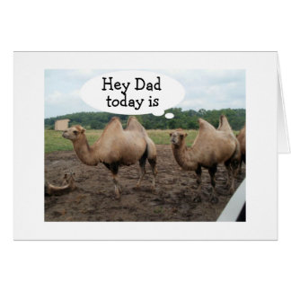 **DAD** CAMELS SAY NO HUMP DAY-IT'S YOUR BIRTHDAY GREETING CARD
