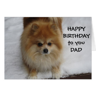 """DAD"" HAPPY BIRTHDAY SAYS THE POMERANIAN CARD"