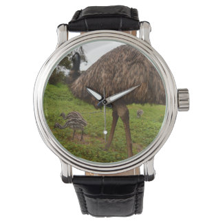 Daddy And Baby Emu Chicks Mens Leather Watch