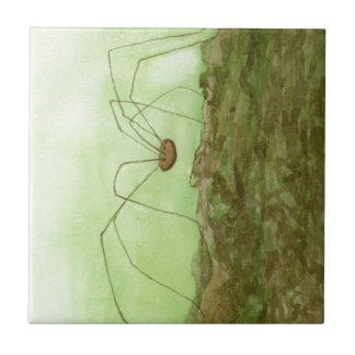 Daddy Long Legs Tile