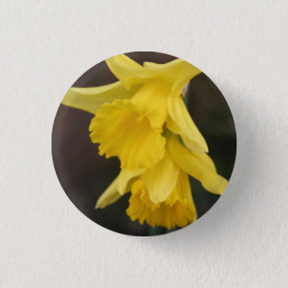 Daffodil Badge 1 Inch Round Button