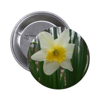 Daffodil Corsage 2 Inch Round Button