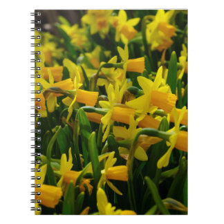 Daffodil Family Spiral Note Book