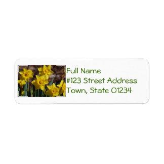 Daffodil Garden Return Address Labels