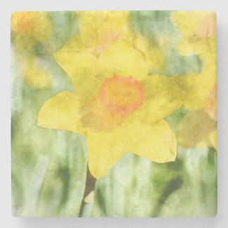 Daffodil in Spring Stone Coaster