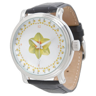 Daffodil madness watch