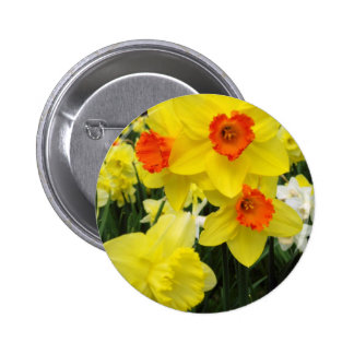 Daffodil Mix Simple 2 Inch Round Button