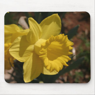 Daffodil Mouse Pad