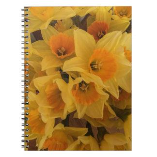 Daffodil note book