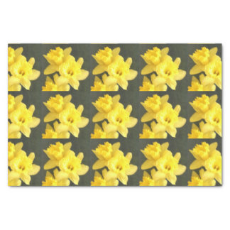 Daffodil Parade! Tissue Paper