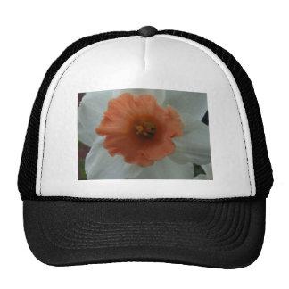 Daffodil Trucker Hat