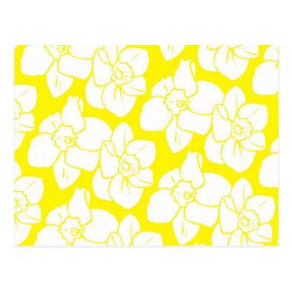 Daffodil Wallpaper Postcard