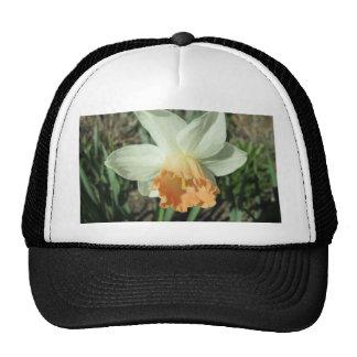 Daffodil White and Orange Trucker Hat