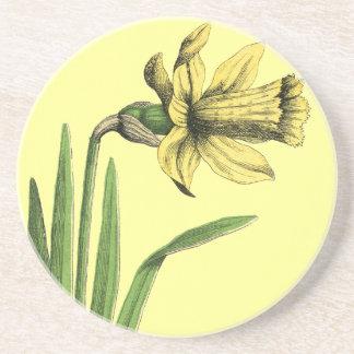 """Daffodil yellow  Old drawing of Daffodil yellow  """" Coaster"""