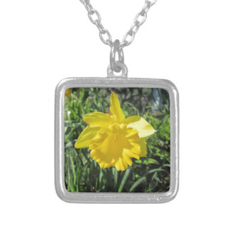 Daffodil Yellow Silver Plated Necklace
