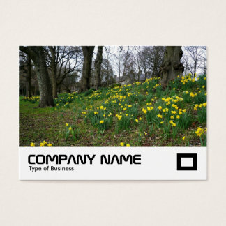 Daffodils Bute Park, Cardiff Business Card