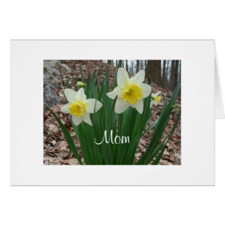 Daffodils Mothers Day Greeting Card