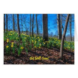 Daffodils on Hillside Card