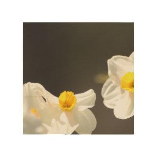 Daffodils Wall Art
