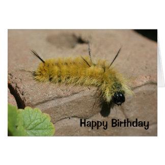 Dagger Moth Caterpillar Nature Birthday Card