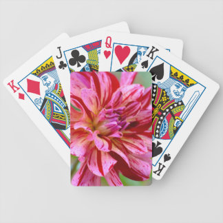 Dahlia Beauty Bicycle Playing Cards