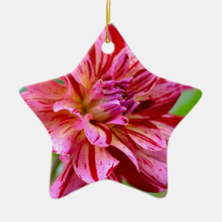 Dahlia Beauty Ceramic Ornament