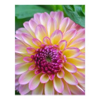 Dahlia Beauty Letterhead