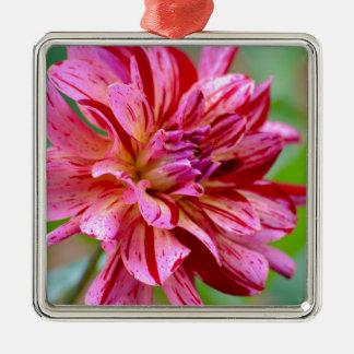 Dahlia Beauty Metal Ornament