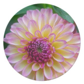 Dahlia Beauty Plate
