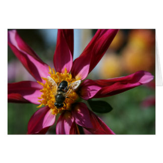 Dahlia & Bee Blank Card