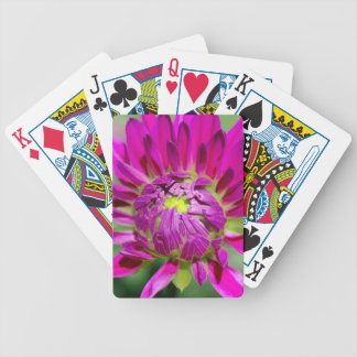 dahlia bicycle playing cards