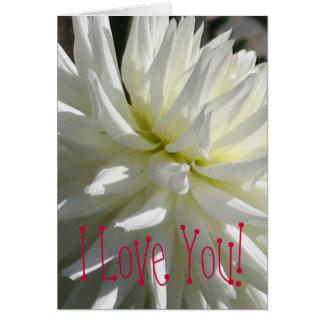 Dahlia blanc carte de vœux