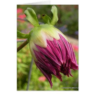 Dahlia Bud Photo Blank Card