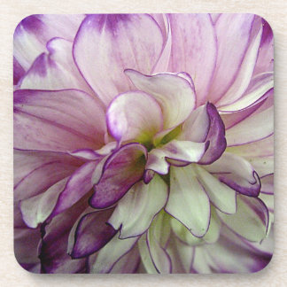 Dahlia Design Set of 6 Square Cork Coasters