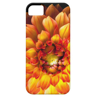 Dahlia flower phone case for iPhone SE and 5/5s.