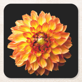 Dahlia flower square paper coaster