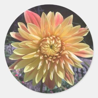 Dahlia Flower Sticker