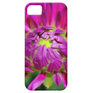 dahlia iPhone 5 covers