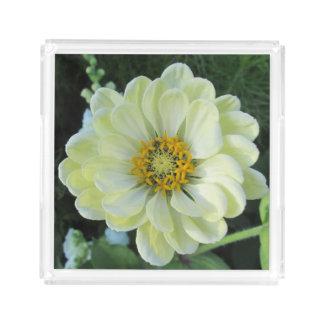 Dahlia Light Yellow Flower Acrylic Tray