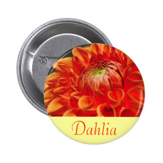 Dahlia Macaron Rond 5 Cm