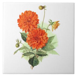 Dahlia 'Orange Fire King' Tiles