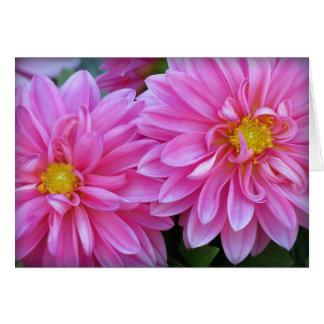 Dahlia Pair in Pink Card