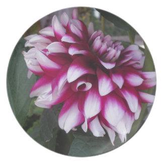 Dahlia Plate