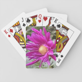 Dahlia playing cards 2