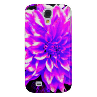 Dahlia puple or lilac tones