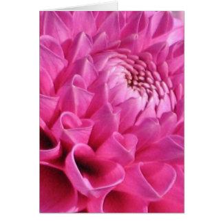 Dahlia rose carte de vœux