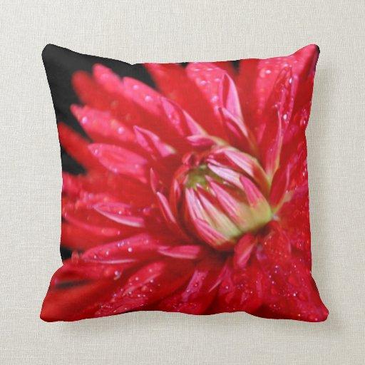 Dahlia rouge de cactus coussin
