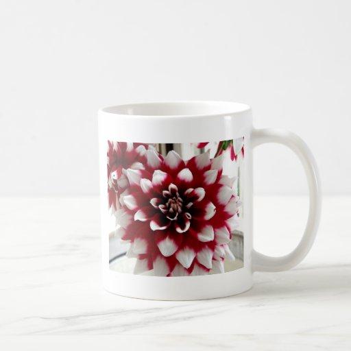 Dahlia Mugs À Café